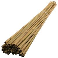Бамбуковая опора 3,0 м, диаметр 28-30 мм